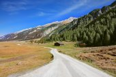 Wide dirt road in Alpine valley — Stock Photo