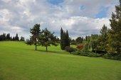 Green field in a park Sigurta — Stock Photo