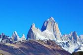 The rocky mountain Fitzroy — Stock Photo