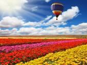 Grande balão voa — Fotografia Stock