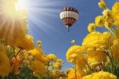 Flying balloon — Stock Photo