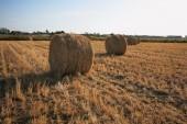 Rick gathered wheat  — Stock Photo