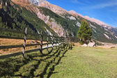 Scenic fields blocked bythe wooden fence — Stock Photo