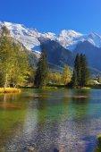 Cozy park in Chamonix — Stock Photo
