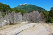 Riverbed in the mountains of the Argentine Patagonia — Stock Photo