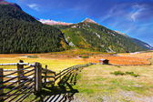 Autumn day in the Austrian Alps — Stock Photo