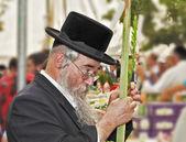 Gray-bearded Jew in black hat — Stockfoto