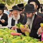 Market before the holiday of Sukkot — Stock Photo #60420037