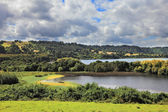 Harmonious lake landscape — Stock Photo
