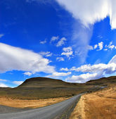 Road in Chilean national park — Stock Photo