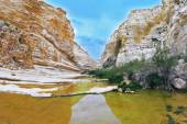 Magnificent canyon in the Negev desert — Photo