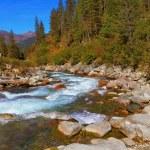 Pastoral in the Alpine stream — Stock Photo #67152001