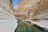 Ein Avdat Canyon, continue the journey — Stock Photo