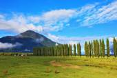 Rural areas in the Chilean Patagonia — Stock Photo