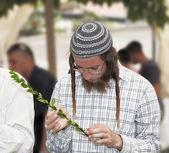 Young religious Jew in gray skullcap  — Stock Photo