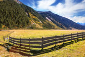 Farmers low wooden fences — Stock Photo