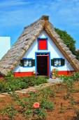 House with thatched roof — Stock Photo