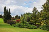 Fabulously beautiful park-garden — Stock Photo