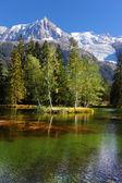 Evergreen trees and lake in Chamonix — Stock Photo