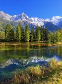 Fransa'da Chamonix dağ beldesinde Şehir Parkı. — Stok fotoğraf