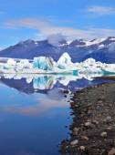 Icebergs and ice floes are reflected in water — Stock Photo