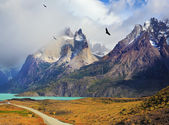 Summer day in the national park Torres del Paine — Stock Photo