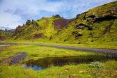 Schilderachtige heuvels begroeid polar moss — Stockfoto