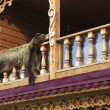 Постер, плакат: Bearskin on the balcony