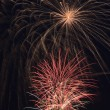 Beautiful fireworks in the night sky. — Stock Photo #52761091