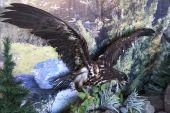 Stuffed eagle. — Stock Photo