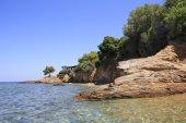 Beautiful stone coast. — Stock Photo
