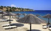 Parasols of straw on the beach of Porto Carras Grand Resort.  — Stock Photo