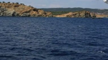Seagulls flying over the sea. Northern Greece. — Vídeo de Stock