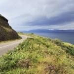 Road along the Atlantic coast. — Stock Photo #60693057