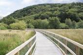 Walking trails in Wicklow Mountains National Park. — Stock Photo