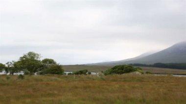 Panorama of National park Connemara. — Stock Video