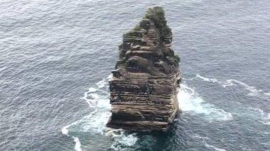 Cliffs of Moher and Atlantic Ocean. — Stock Video