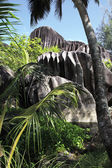 Enormous black granite rocks in the thickets of tropical vegetation. — Stock Photo