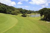 Lake on golf course at the Constance Lemuria Resort. — Photo