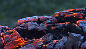 Beautiful log smoldering in the fire. — Stock Photo