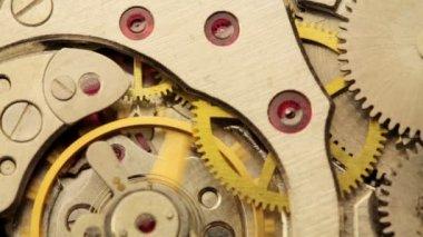 Watch gears — Stock Video
