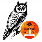 Halloween background. Typographic poster. — Stock Vector