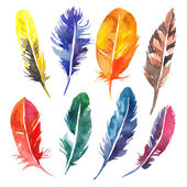 Watercolor feathers set. — Stock Vector