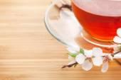 Japanese green tea and sakura branch — Stock Photo