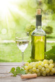 White wine glass and bottle — Stock Photo