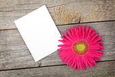 Photo frame and gerbera flower — Stock Photo