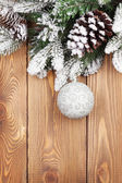 Christmas fir tree with snow — Foto de Stock