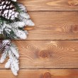 Christmas fir tree with snow — Stock Photo #52860717
