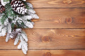 Christmas fir tree with snow — Stok fotoğraf