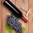 Red wine bottle and bunch of red grapes — Stock Photo #54792247